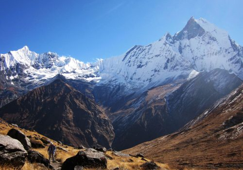 Annapurna Sanctuary / BC Trek Itinerary and Details (14 Days)
