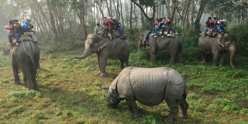 Annapurna Trek and Chitwan Jungle Safari